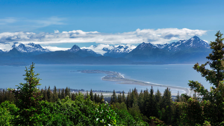 About Homer, Alaska